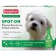 Beaphar Pipetten gegen Ungeziefer für Hunde