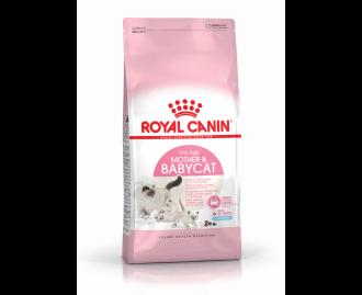 Royal Canin Babycat 34 Trockenfutter für kleine Katzen