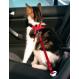 TRIXIE Katzengeschirr mit Sicherheitsgurt 20-50 cm rot