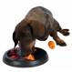 Intelligenzspielzeug für Hunde Trixie Aktivität Flipboard