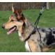 Arnes para perros TRIXIE Easy Walk Grund