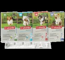 Pipetten Advantix für Hunde gegen Ungeziefer