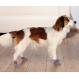 Trixie Hundesocken Grau