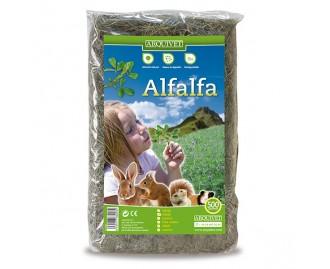 Arquivet Alfalfa para roedores