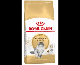 Royal canin Norwegian Trockenfutter für Katzen