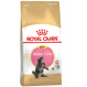 Royal canin Maine coon Trockenfutter für Kätzchen