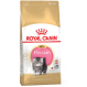 Royal canin Persian Trockenfutter für persische Kätzchen