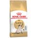 Royal canin siamese Trockenfutter für siamesische Katzen