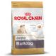 Royal canin Bulldog junior Trockenfutter für junge Bulldoggen