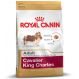 Royal canin Cavalier king charles Trockenfutter für Cavalier king charles