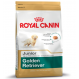 Royal canin Golden retriever junior Trockenfutter für junge Golden retriever