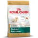 Royal canin Golden retriever junior Trockenfutter für junge Golden retriever