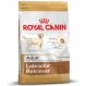 Royal canin Labrador Trockenfutter für Labrador
