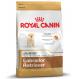 Royal canin Labrador junior Trockenfutter für junge Labradore