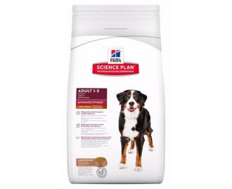 Hills Adult Advance Fitness Grosse Rassen Lamm und Reis 12kg. Science Plan Trockenfutter für Hunde