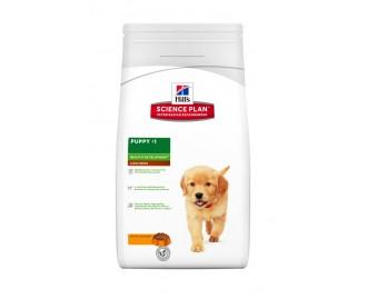 Hills Puppy Healthy Development grosse Rassen mit Huhn Science Plan Trockenfutter für Welpen