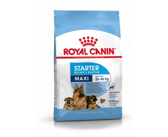 Royal Canin maxi starter mother & babydog Trockenfutter für Hunde grosser Rassen
