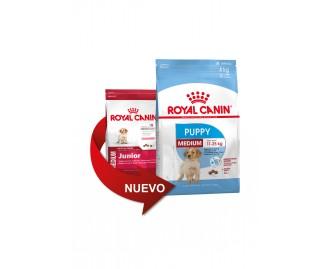 Royal Canin medium junior Trockenfutter für Hunde mittel grosser Rassen