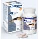 Cosequin Taste HA Chondroprotektiv für Hunde