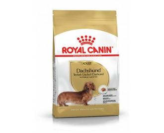 Royal canin Teckel Trockenfutter für Dackel