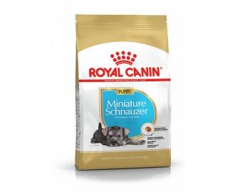 Royal canin Schnauzer junior Trockenfutter für junge Schnauzer