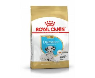 Royal canin Dalmata junior 12 kg. Trockenfutter für junge Dalmatiner