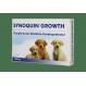 Synoquin Wachstum chondroprotektiva für Hunde