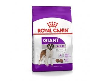 Royal Canin giant adult Trockenfutter für riesige Hunde