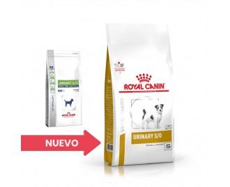 Royal canin urinary s/o small dog Diát für Hunde