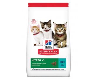 Hills Kitten Healthy Development Thunfisch Science Plan Trockenfutter für Kätzchen