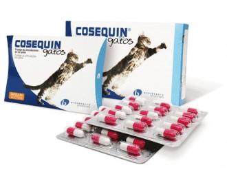 Cosequin chondroprotectiv für Katzen