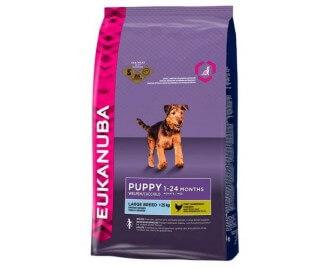 Eukanuba Puppy Large Breed Kroketten für Welpen großer Rassen