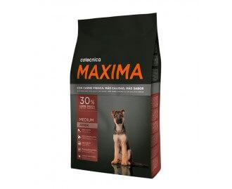 Maxima Medium Junior Trockenfutter für Hunde