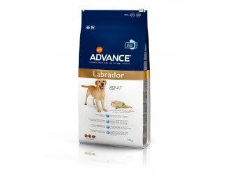 Advance Labrador Trockenfutter für Labradore