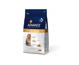 Advance-Yorkshire Terrier Trockenfutter für Hunde der Rasse Yorkshire Terrier