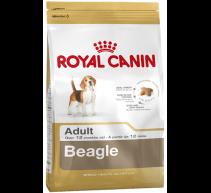 Royal Canin Trockenfutter für Beagle adult