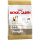 Royal Canin Trockenfutter für Beagle adult