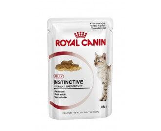 Royal Canin Nassfutter in Gelatine für erwachsene Katzen