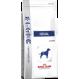 Royal canin renal Diät für Hunde