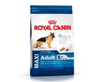 Royal Canin Maxi adult + 5 für Hunde älter als 5 Jahren