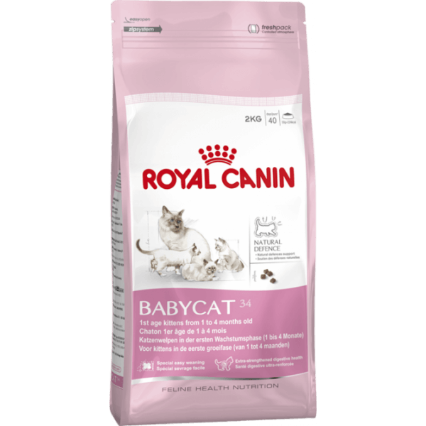 royal canin babycat 34 trockenfutter f r kleine katzen. Black Bedroom Furniture Sets. Home Design Ideas