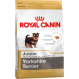 Royal canin Yorkshire junior Trockenfutter für junge Yorkshire
