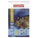 Beaphar Pflege + Futter für Degu