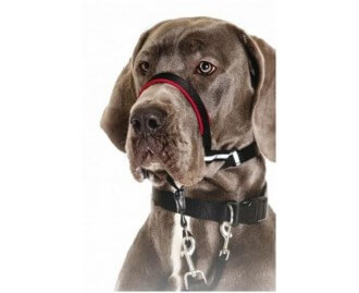 Halti Anti-Zug Halsband Optifit [3 Grössen]